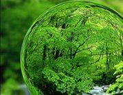 بیست و دومین همایش ملی سبز برگزار شد