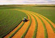 تغییر رویکرد مجمع ملی خبرگان کشاورزی به استفاده از دانش روز