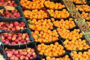 سایه اجارهبهای نجومی بر گرانفروشی میوه / بازار به حال خود رهاست