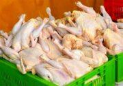 مصرف مرغ در تهران طی یک هفته ۶۰۰ تن افزایش یافت
