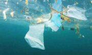 همراهی با روز جهانی محیط زیست، با اندکی پلاستیک کمتر