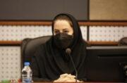 تدوین برنامه های مطالعاتی و راهبردی سازمان در حوزه نوار ساحلی کیش