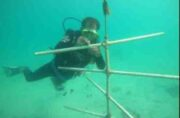 احیای زیست بوم های مرجانی و ساخت زیستگاههای مصنوعی در آبهای کیش