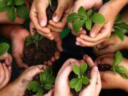 حمایت ۲ هزار میلیاردی بانک کشاورزی از زنان و جوانان روستایی در پروژه مشترک با سازمان ملل متحد